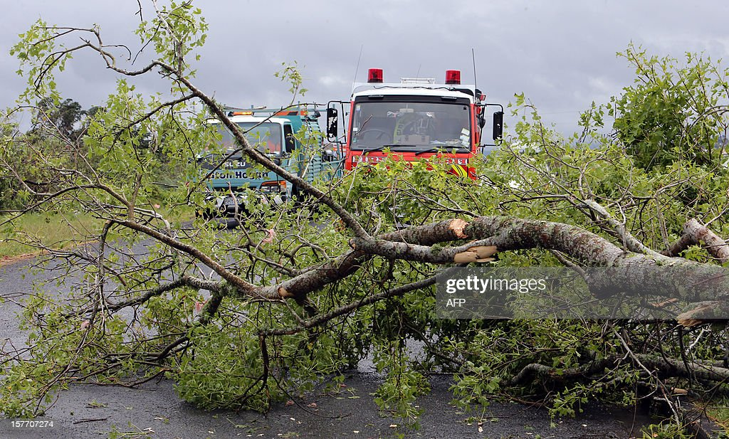 A rescue vehicle (C) drives on a street in front of a felled tree in Hobsonville, Auckland on December 6, 2012 after packed wind gusts of up to 110 kilometres (70 miles) per hour, struck suburban Hobsonville in the afternoon. A freak storm described by police as a tornado hit New Zealand's largest city Auckland on December 6 causing 'utter devastation', with three people reportedly killed in ferocious winds. AFP PHOTO / Michael Bradley