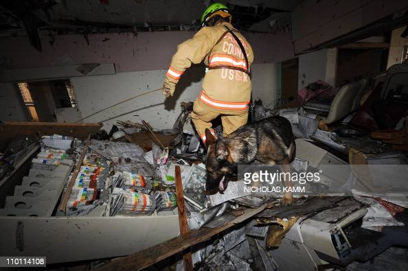 A US rescue worker and her dog search a house for survivors in Ofunato during search operations in Ofunato on March 15 2011 Rescue teams from the US...