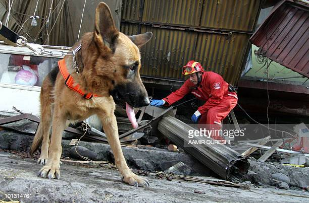 A rescue workers from Turkey is accompanied by a sniffer dog as he searches for earthquake victims at a collapsed building in Muzaffarabad capital of...