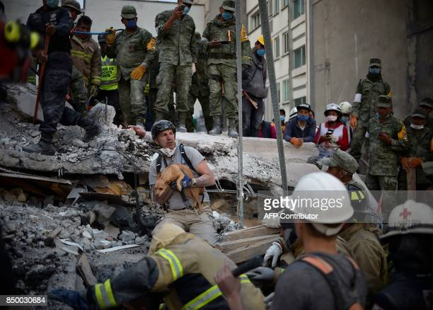 A rescuer pulls a dog out of the rubble during the search for survivors in Mexico City on September 20 2017 after a strong quake hit central Mexico...