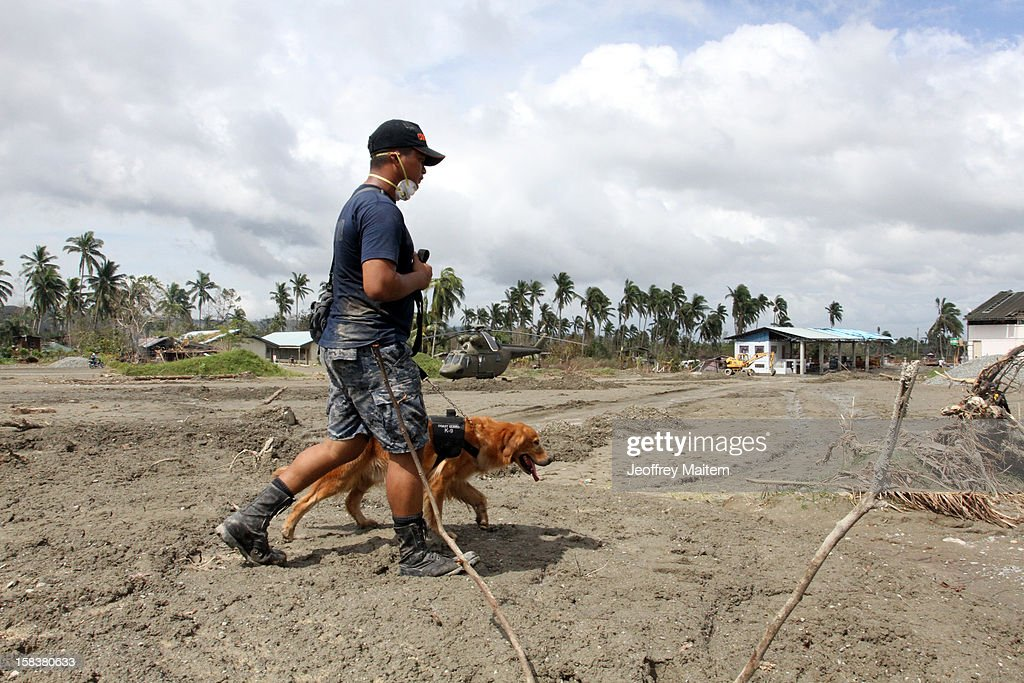 A rescuer uses a K9 dog in a search for missing people on December 14, 2012 in the devastated town of New Bataan, Compostela Valley province, Philippines. More than 900 people have died and nearly a thousand remain missing after Typhoon Bopha, the strongest storm to hit the Philippines this year, pounded the region.