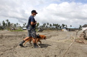 A rescuer uses a K9 dog in a search for missing people on December 14 2012 in the devastated town of New Bataan Compostela Valley province...