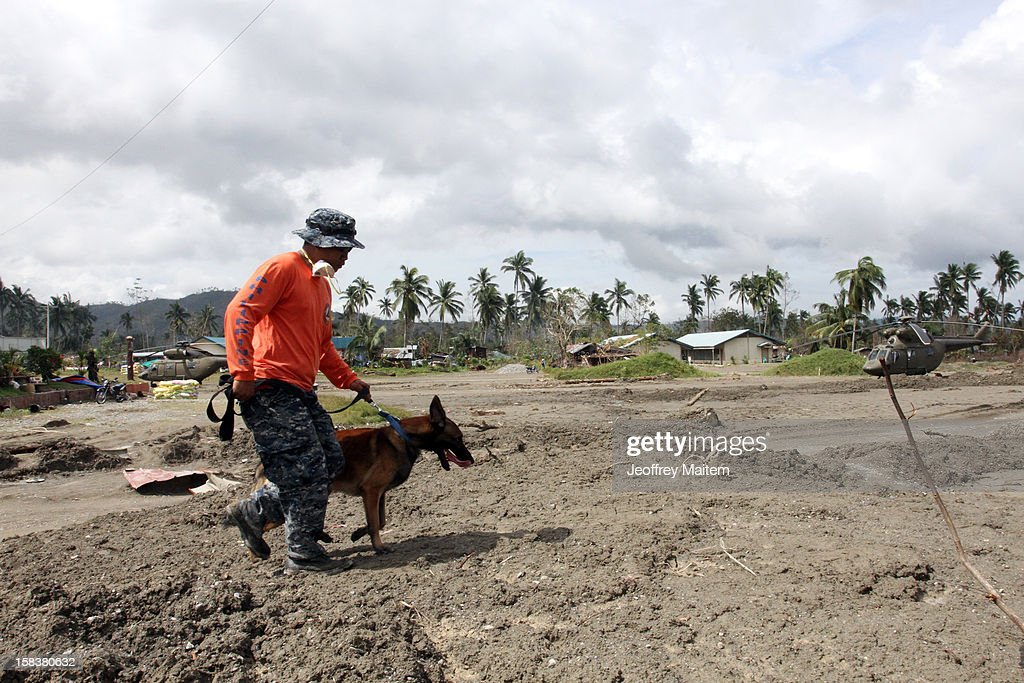 A rescuer uses K9 dog in searching for missing people on December 14, 2012 in the devastated town of New Bataan, Compostela Valley province, Philippines. More than 900 people have died and nearly a thousand remain missing after Typhoon Bopha, the strongest storm to hit the Philippines this year, pounded the region.