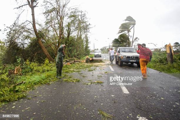 Rescuers clear the road from an uprooted tree in the village of Viard Petit Bourg on September 19 2017 in the French territory of Guadeloupe after...