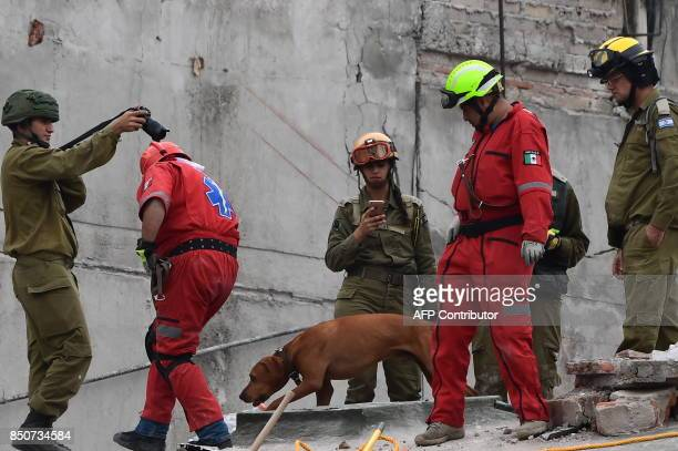 Rescuers from Israel join the search for survivors in a flattened building in Mexico City on September 21 2017 two days after a strong quake hit...