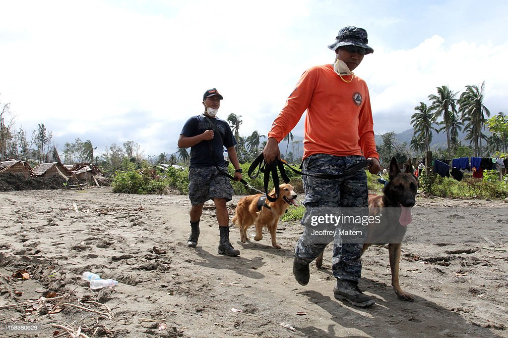 Rescuers use K9 dogs in a search for missing people on December 14, 2012 in the devastated town of New Bataan, Compostela Valley province, Philippines. More than 900 people have died and nearly a thousand remain missing after Typhoon Bopha, the strongest storm to hit the Philippines this year, pounded the region.