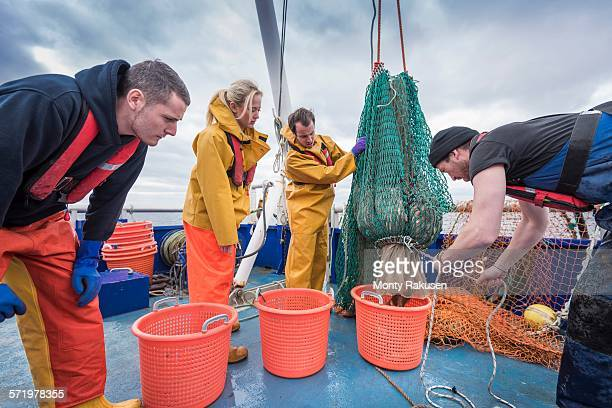 Research scientists and fishermen bring in catch of fish on research ship