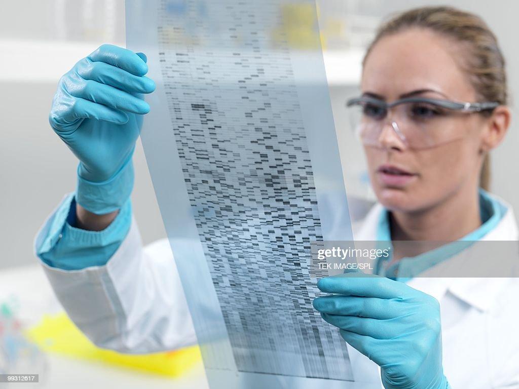 Researcher holding an autoradiogram : Stock Photo