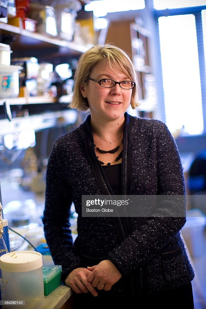 Researcher Linda Griffith, who is founding a new center to focus on gynepathology at MIT, is photographed on December 3, 2009.