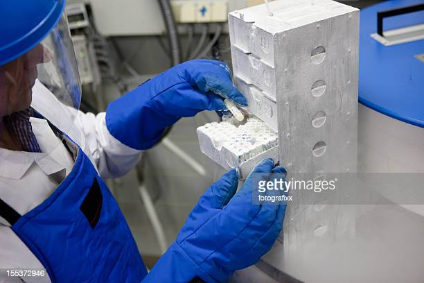 researcher working at a Container with liquid nitrogen