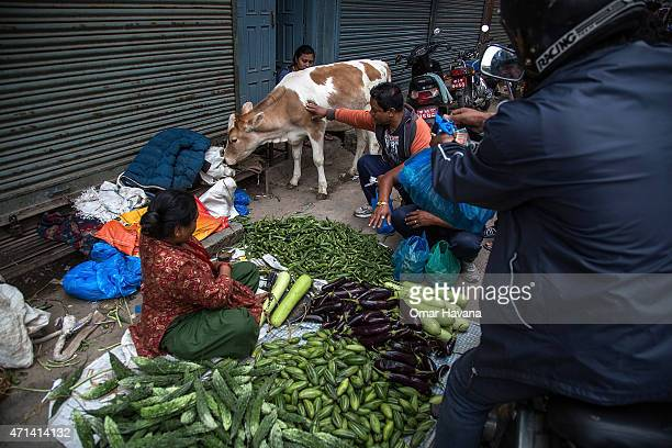 Resident buy vegetables from a street vendor on April 28 2015 in Kathmandu Nepal A major 78 earthquake hit Kathmandu midday on Saturday and was...