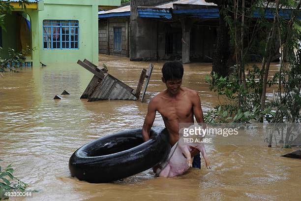 A resident carries his rescued piglet near floodinundated houses at a village in Santa Rosa town Nueva Ecija province north of Manila on October 19 a...