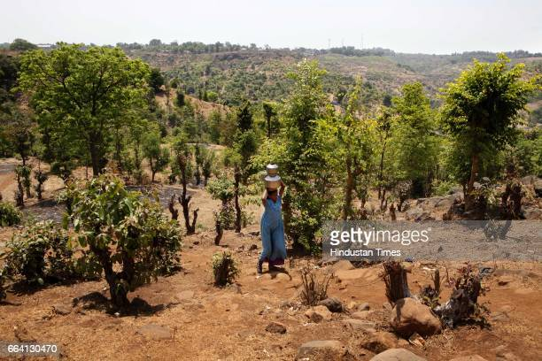 A resident of Asaranagar in Jawhar walks back to the village after filling water from a ditch more than two km from the village Water scarcity has...