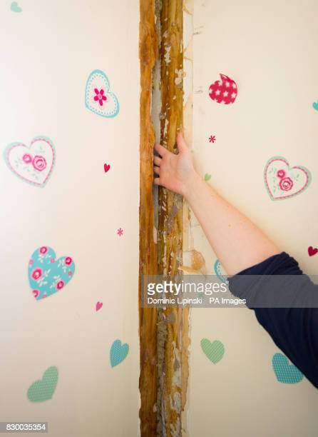 A resident of Bromyard House on the Ledbury estate in south London shows the extent of structural damage to her flat Hundreds of residents may be...