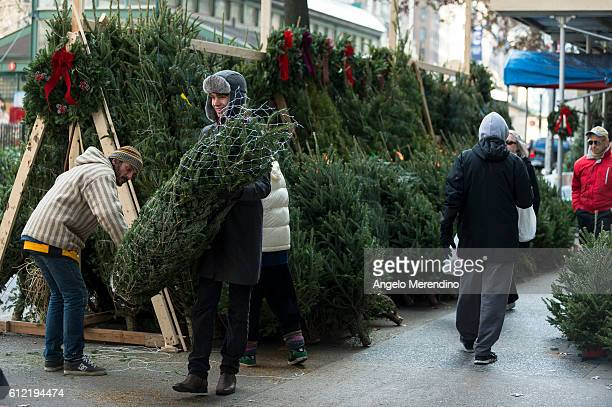A resident of Manhattan's Upper West Side purchases a Christmas tree from a street vendor on Friday November 29 2013