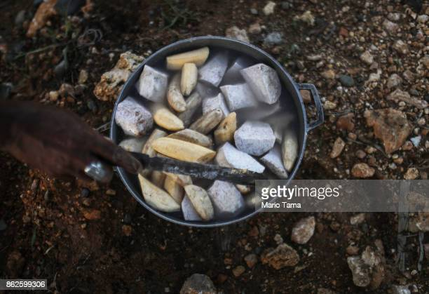 A resident prepares a simple soup of banana and malanga to be cooked over fire in a neighborhood still without grid electricity or running water on...