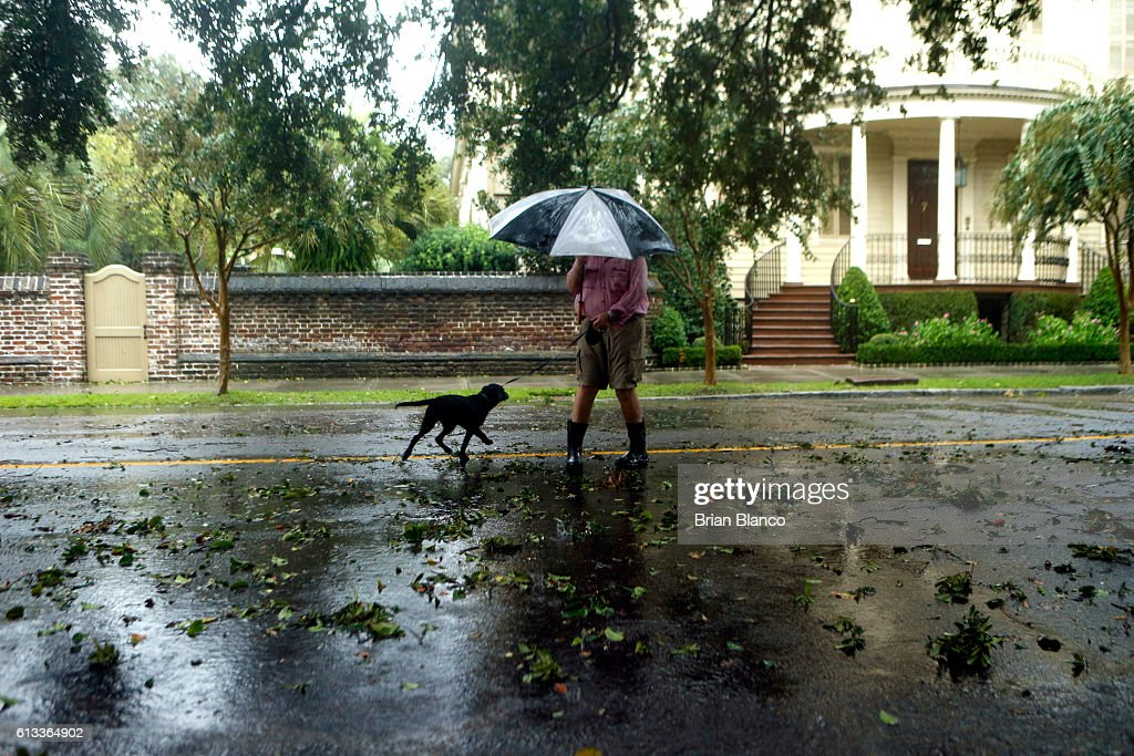 A resident takes his dog for a walk amid fallen branches and nearby flooded streets in the wake of Hurricane Matthew on October 8 2016 in Charleston...