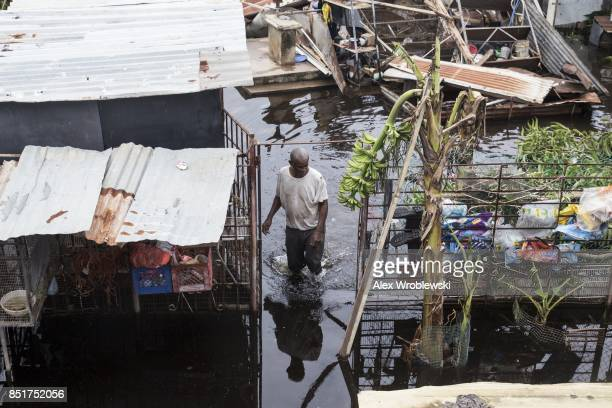 A resident wades through flood water days after Hurricane Maria made landfall on September 22 2017 in Loiza Puerto Rico Many on the island have lost...