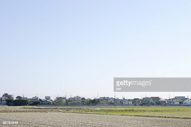 Residential area and Rice field