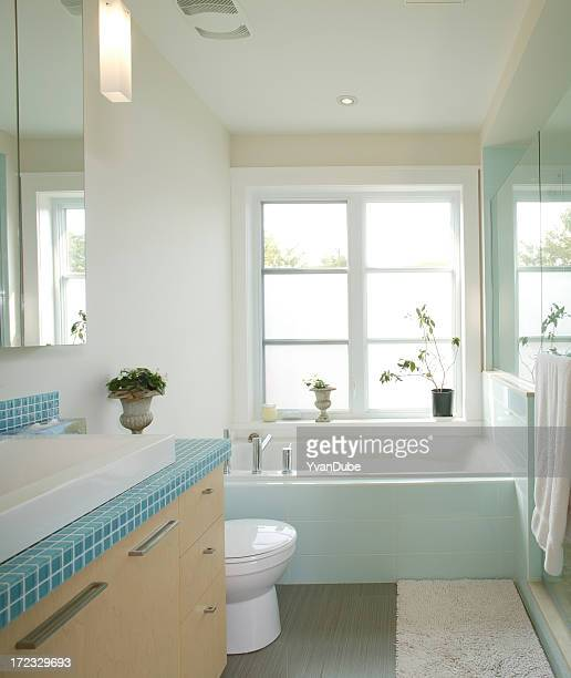 residential modern bathroom