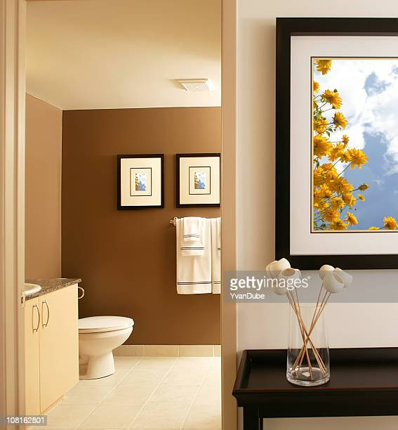 residential modern bathroom with frames