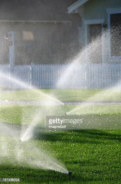 Residential Sprinklers Irrigating a Beautiful Lawn