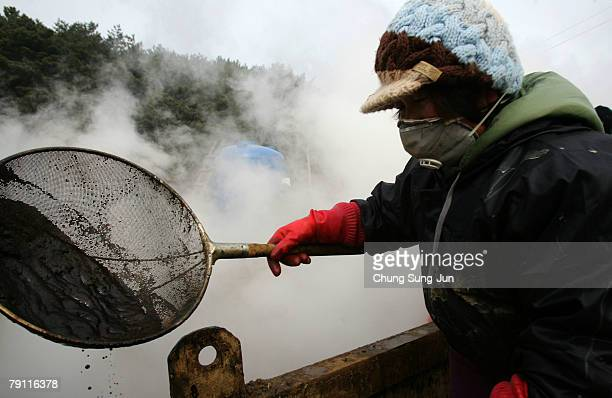 Residents and fishermen of Taean continue work to remove oil at the seashore on January 19 2008 in Taean South Korea South Korea's worst oil spill...