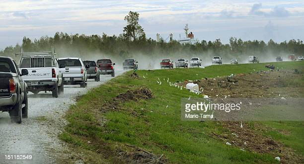 Residents and others ride in a convoy on top of a levee past debris to visit lower Plaquemines Parish following Hurricane Isaac on September 2 2012...