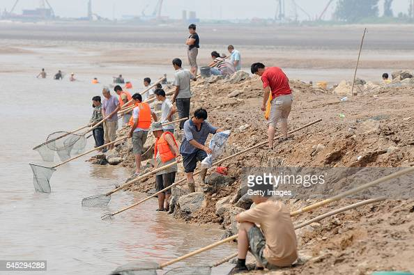 Pinglu stock photos and pictures getty images for People catching fish