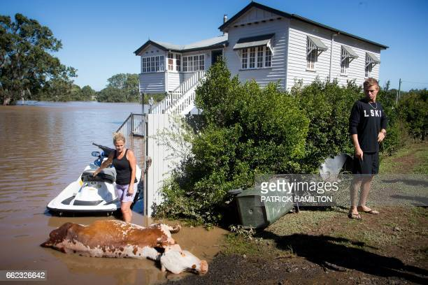 Residents look at a cow which drowned in floodwaters caused by Cyclone Debbie that they recovered on their property in North MacLean Brisbane on...