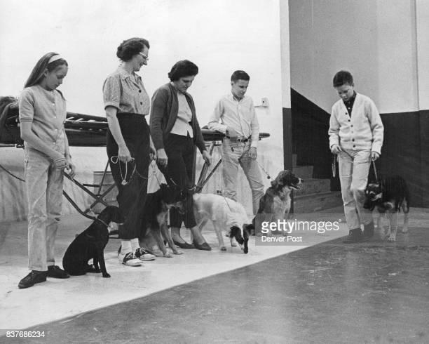 Residents of southwest Denver teach their pets obedience at a Yspon sored dog obedience class David Dewey 4440 S Clarkson St leads Duchess past group...