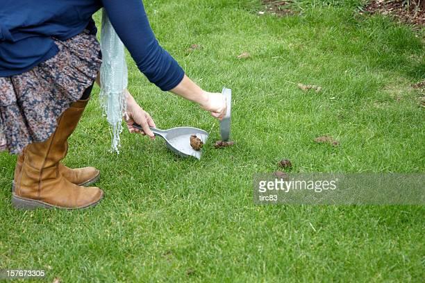 Fake Grass Dog Toilet