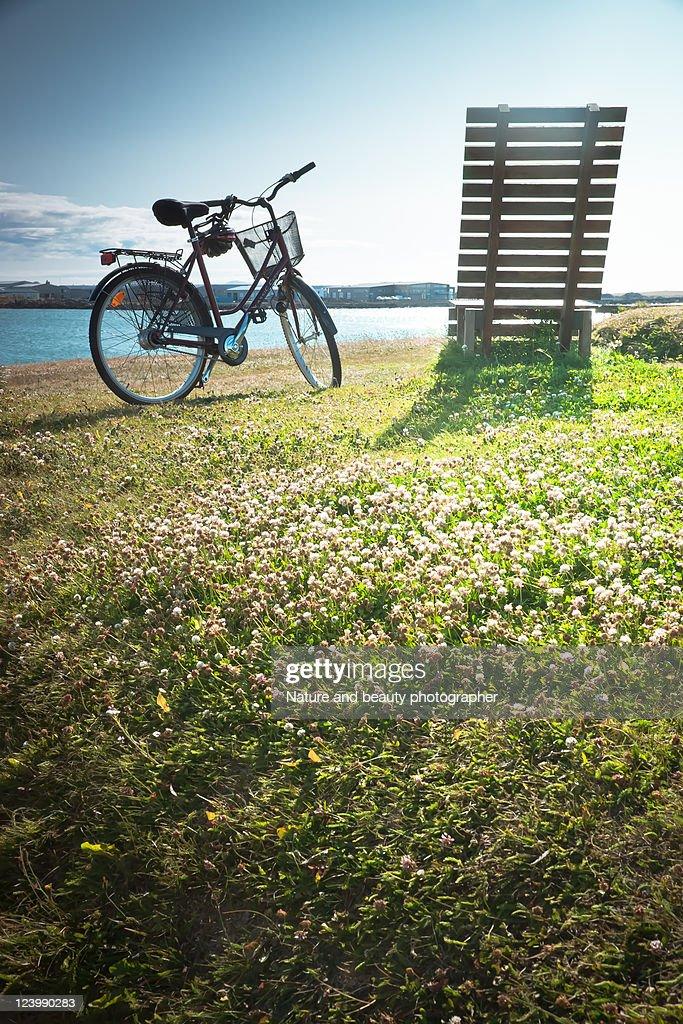Rest on Iceland : Stock Photo