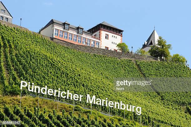 Restaurant Marienburg an der schönen Mosel. Weinberg
