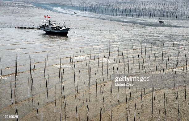 Resting  ship on low-tide mudflat