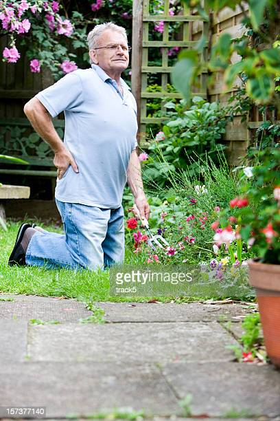 retirement: senior man stretching from gardening to relieve back ache