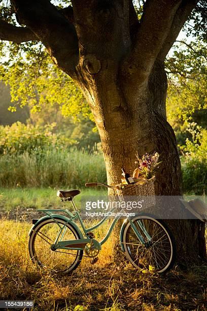 Retro Fahrrad mit Rotwein in Picknick-Korb XXXL