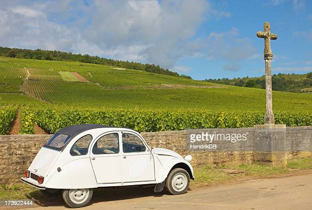 Retro car in a vineyard