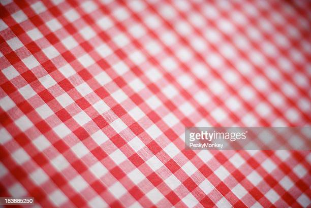Retro Gingham Tablecloth Red and White Checks Full Frame