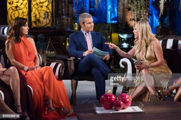 CITY 'Reunion' Pictured Bethenny Frankel Andy Cohen Ramona SInger