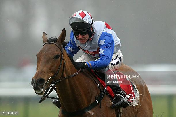Reve De Sivola ridden by Richard Johnson jumps the last to win the Betfred ÒHome Of Goals Galore' Hurdle Race at Haydock racecourse on February 20...