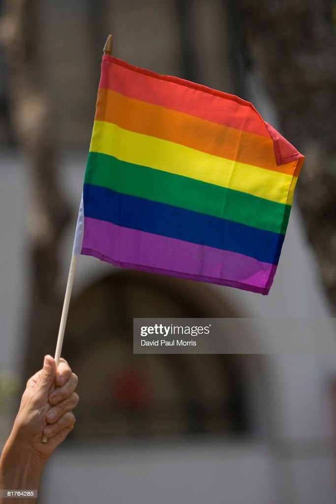 A reveler holds a gay pride flag during the 38th Annual San Francisco Lesbian Gay Bisexual Transgender Pride Celebration Parade on Market Street June...