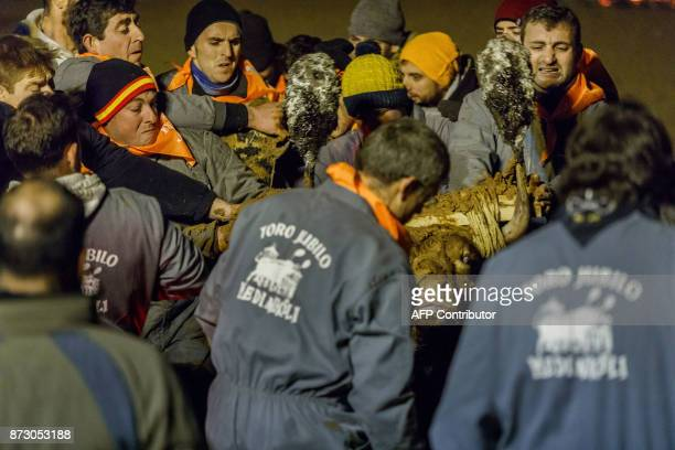 Revelers attach flammable balls to the bull's horns during the 'Toro de Jubilo' festival in Medinaceli near Soria Spain on November 11 2017 The...
