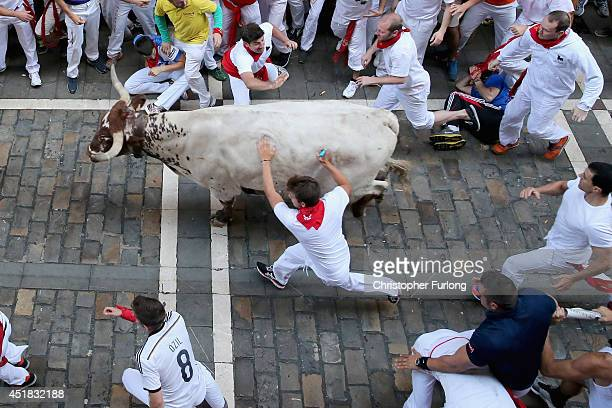 A reveller touches a steer during the third day of the San Fermin Running Of The Bulls festival on July 8 2014 in Pamplona Spain The annual Fiesta de...