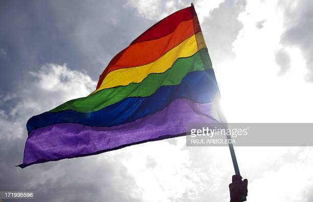 A reveller waves a rainbow flag during the Gay Pride Parade in Medellin Antioquia department Colombia on June 30 2013 AFP PHOTO/Raul ARBOLEDA