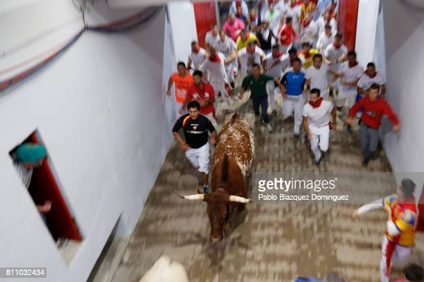 Revellers run behind a calf after Puerto de San Lorenzo's fighting bulls entered the bullring during the fourth day of the San Fermin Running of the...