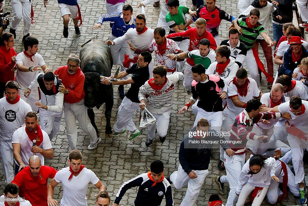 Revellers run with the Adolfo Martin Andres's fighting bulls at the end of the run during the eighth day of the San Fermin Running Of The Bulls festival on July 13, 2014 in Pamplona, Spain. The annual Fiesta de San Fermin, made famous by the 1926 novel of US writer Ernest Hemingway 'The Sun Also Rises', involves the running of the bulls through the historic heart of Pamplona.