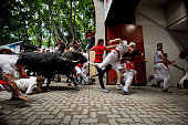 Revellers run with the Tajo and the Reina's fighting bulls entering the bullring during the third day of the San Fermin Running Of The Bulls festival...