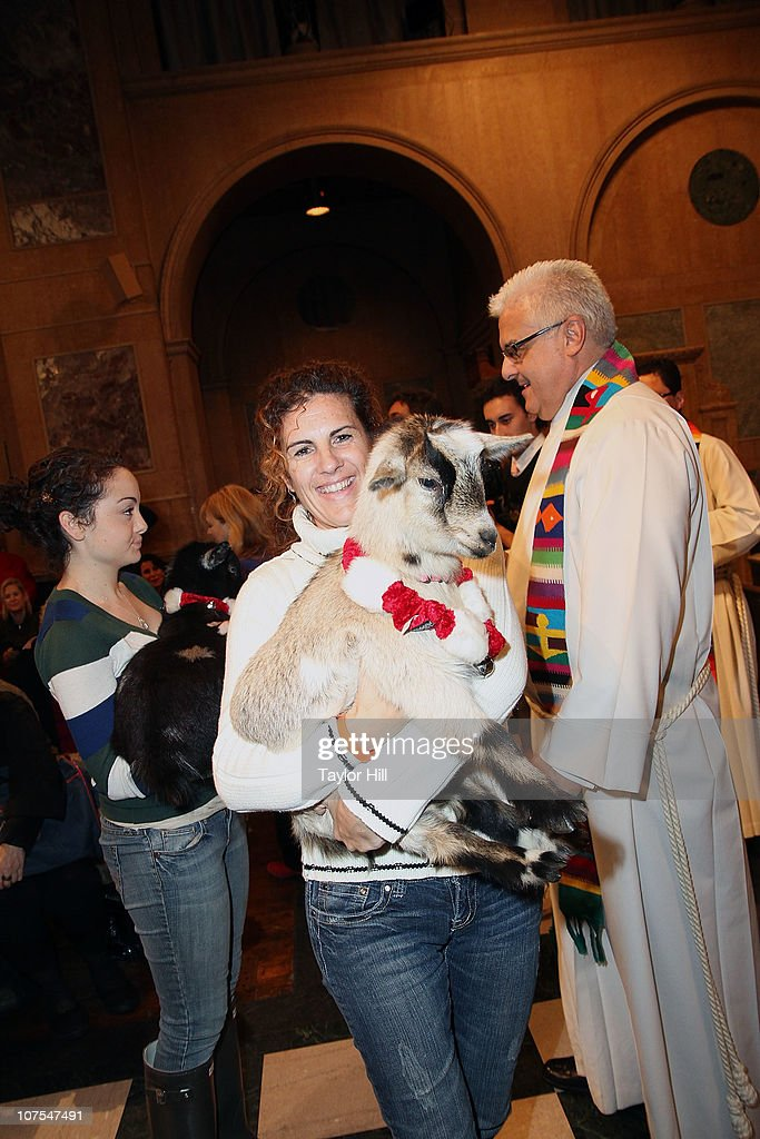 Reverend Stephen Bauman blesses a goat at the 2010 ASPCA Blessing Of The Animals at Christ Church on December 12, 2010 in New York City.