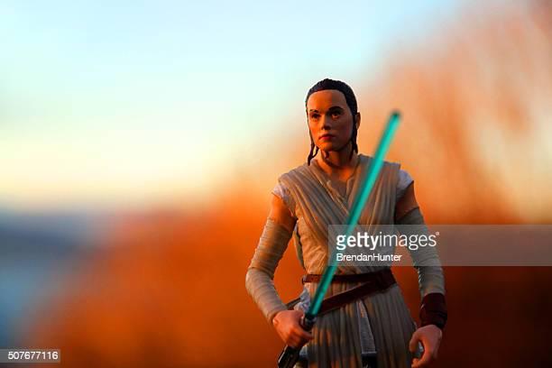 Rey at Sunset